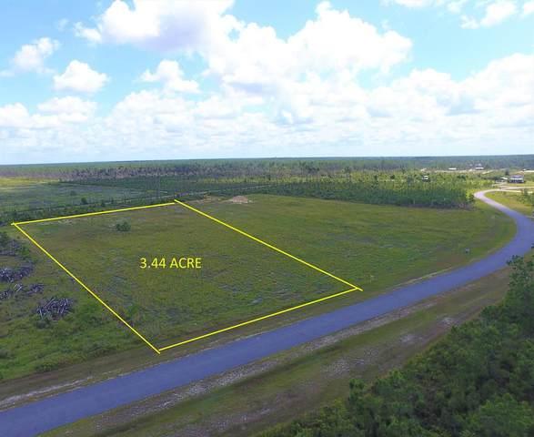 Lot 185 Wide Water Cir, WEWAHITCHKA, FL 32465 (MLS #308123) :: The Naumann Group Real Estate, Coastal Office