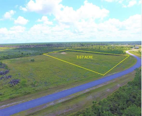 Lot 186 Wide Water Cir, WEWAHITCHKA, FL 32465 (MLS #308124) :: The Naumann Group Real Estate, Coastal Office