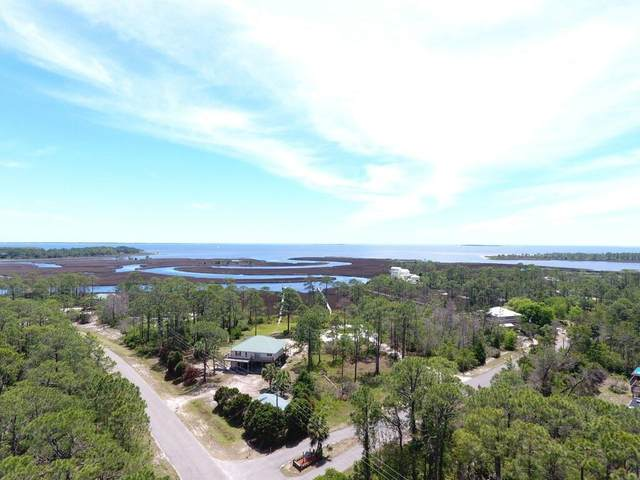 146 Timber Island Rd, CARRABELLE, FL 32322 (MLS #308132) :: Anchor Realty Florida