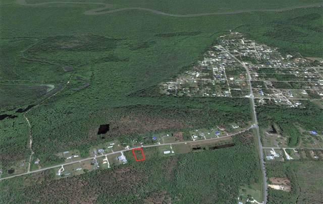 381 Old Bay City Rd, WEWAHITCHKA, FL 32465 (MLS #308155) :: The Naumann Group Real Estate, Coastal Office