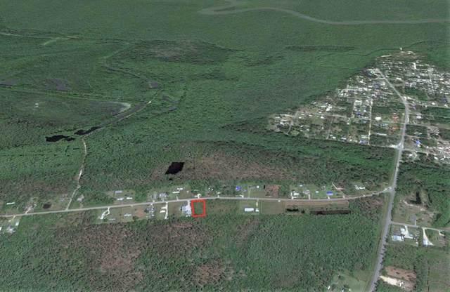 401 Old Bay City Rd, WEWAHITCHKA, FL 32465 (MLS #308156) :: The Naumann Group Real Estate, Coastal Office