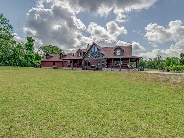 171 Mill Pond Rd, CARRABELLE, FL 32322 (MLS #308169) :: Anchor Realty Florida
