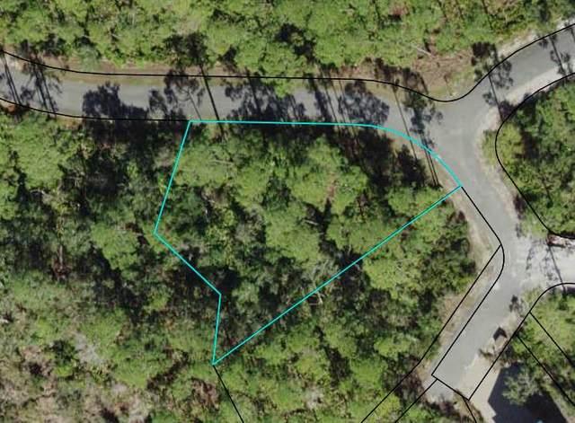 136 Marshmallow Ln, CARRABELLE, FL 32323 (MLS #308191) :: Anchor Realty Florida