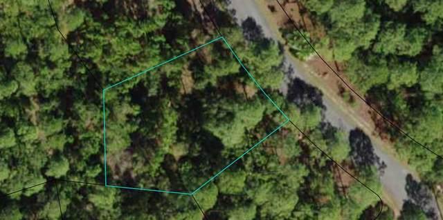 136 Turkeypoint Rd, CARRABELLE, FL 32323 (MLS #308193) :: Berkshire Hathaway HomeServices Beach Properties of Florida