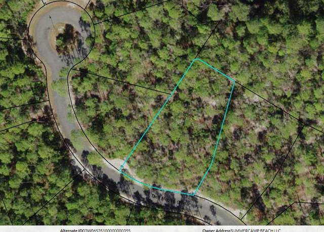 115 Treehouse Cir, CARRABELLE, FL 32323 (MLS #308195) :: Anchor Realty Florida