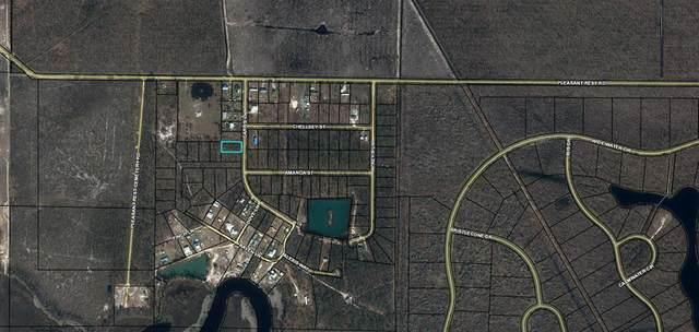 5 Carr's Ln, WEWAHITCHKA, FL 32465 (MLS #308208) :: Anchor Realty Florida