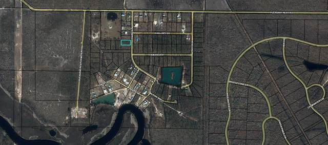 6 Carr's Ln, WEWAHITCHKA, FL 32465 (MLS #308209) :: Anchor Realty Florida