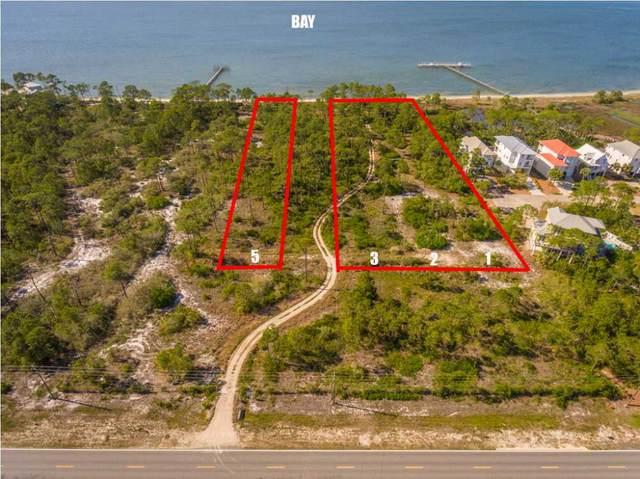 1601 E Gulf Beach Dr, ST. GEORGE ISLAND, FL 32328 (MLS #308216) :: The Naumann Group Real Estate, Coastal Office