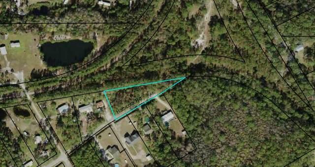63 Hathcock Rd, APALACHICOLA, FL 32320 (MLS #308221) :: The Naumann Group Real Estate, Coastal Office