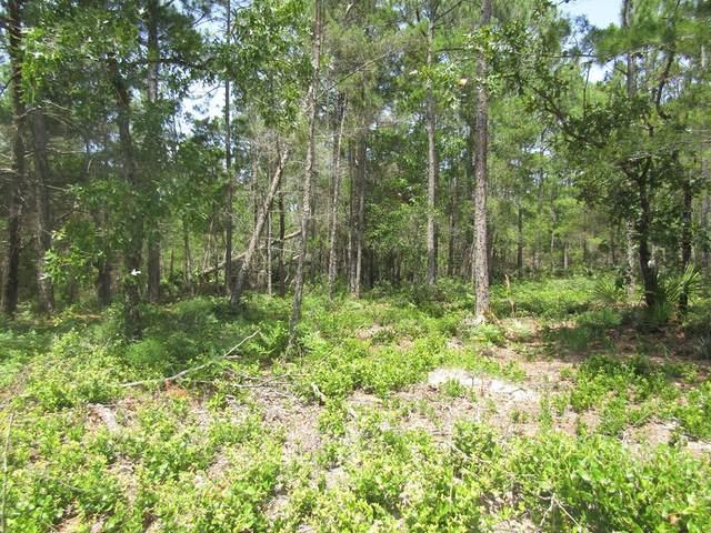 142 Kal Ln, CARRABELLE, FL 32322 (MLS #308270) :: Anchor Realty Florida