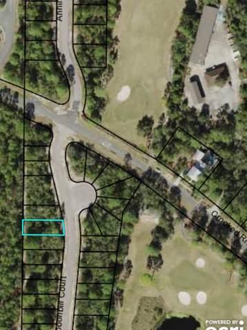 113 Spoonbill Ct, CARRABELLE, FL 32322 (MLS #308359) :: Anchor Realty Florida
