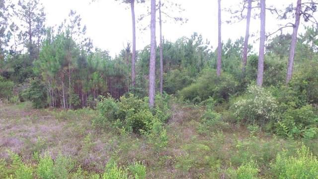 1843 Beacon St, CARRABELLE, FL 32322 (MLS #308371) :: Anchor Realty Florida