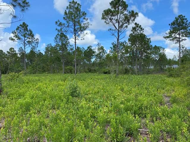 2685 Hwy 98 E, PORT ST. JOE, FL 32456 (MLS #308387) :: The Naumann Group Real Estate, Coastal Office