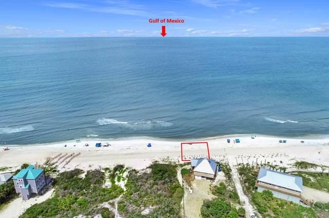 195 Antilles Dr, PORT ST. JOE, FL 32456 (MLS #308410) :: Anchor Realty Florida