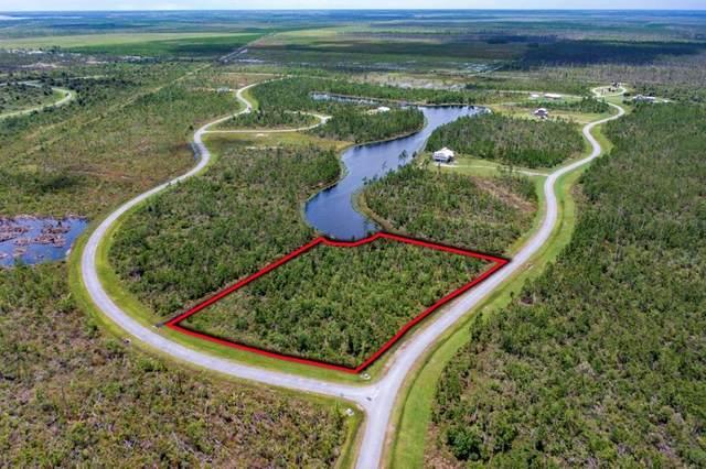 167 Ibis Dr., WEWAHITCHKA, FL 32465 (MLS #308427) :: The Naumann Group Real Estate, Coastal Office