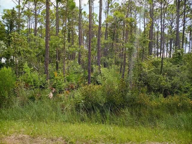 332 Nedley St, ST. GEORGE ISLAND, FL 32328 (MLS #308469) :: Anchor Realty Florida