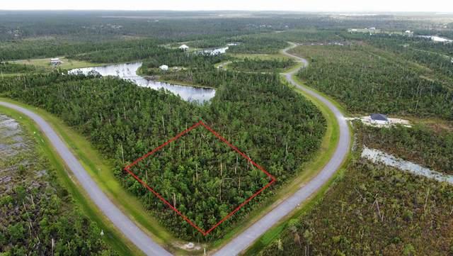 154 Wide Water Cir, WEWAHITCHKA, FL 32465 (MLS #308482) :: Anchor Realty Florida
