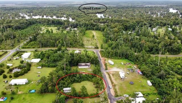 161 W Leary Dr, WEWAHITCHKA, FL 32465 (MLS #308569) :: Anchor Realty Florida