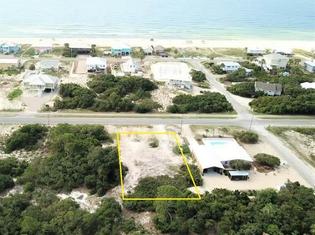773 W Gulf Beach Dr, ST. GEORGE ISLAND, FL 32328 (MLS #308588) :: Anchor Realty Florida