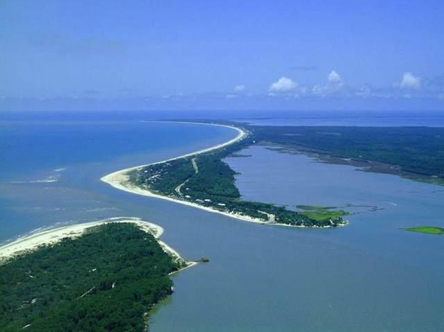 10470 Cr 30-A, PORT ST. JOE, FL 32456 (MLS #308590) :: Berkshire Hathaway HomeServices Beach Properties of Florida