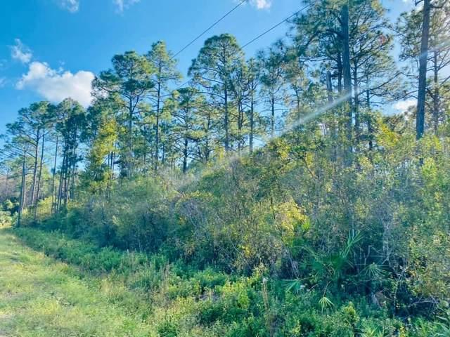 0 Peachtree Rd, APALACHICOLA, FL 32320 (MLS #308622) :: The Naumann Group Real Estate, Coastal Office