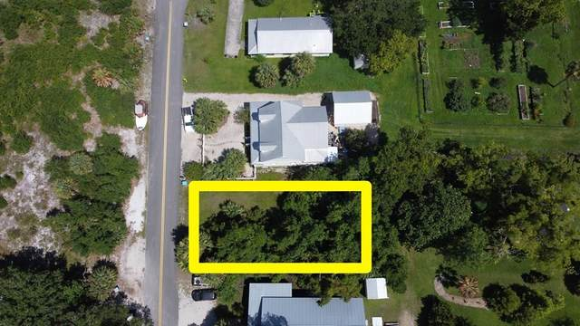 112 Dr Frederick S Humphries St, APALACHICOLA, FL 32320 (MLS #308692) :: Anchor Realty Florida