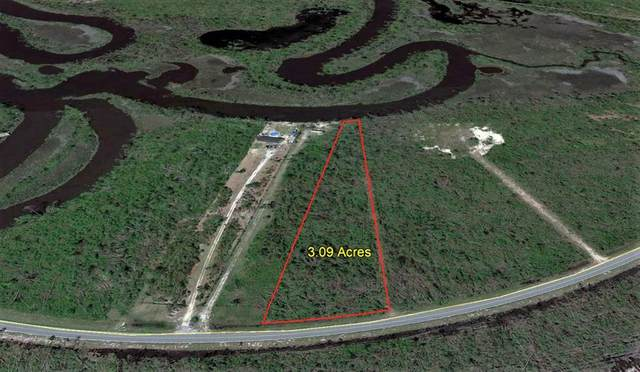 6 Cr 386 N, WEWAHITCHKA, FL 32465 (MLS #308915) :: The Naumann Group Real Estate, Coastal Office
