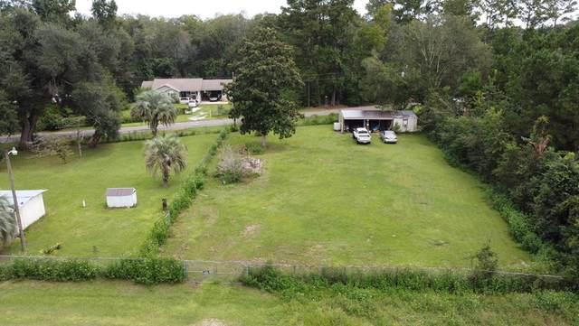 11 Oak Ave, WEWAHITCHKA, FL 32465 (MLS #309016) :: Anchor Realty Florida