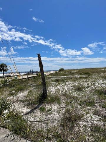 0 Canal Pkwy, MEXICO BEACH, FL 32456 (MLS #309084) :: Anchor Realty Florida