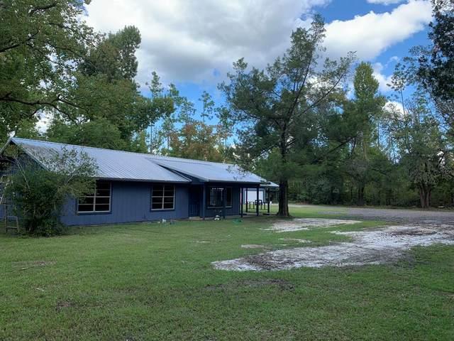 3841 Cr 386 N, WEWAHITCHKA, FL 32465 (MLS #309105) :: Anchor Realty Florida