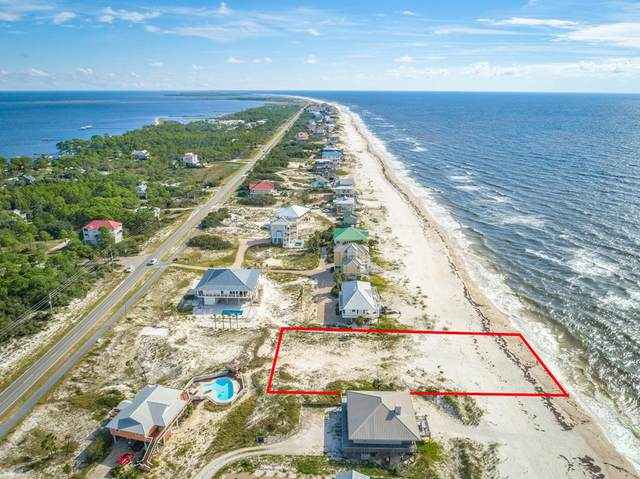 1436 E Gulf Beach Dr, ST. GEORGE ISLAND, FL 32328 (MLS #309157) :: Anchor Realty Florida