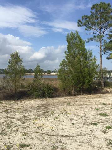 103 Anglers Harbor Ct, CARRABELLE, FL 32322 (MLS #309210) :: Anchor Realty Florida