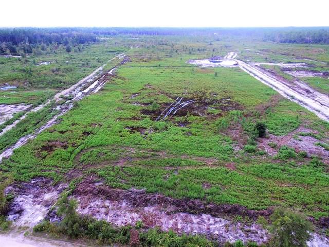576 Clark's Landing Rd, CARRABELLE, FL 32322 (MLS #309215) :: Anchor Realty Florida