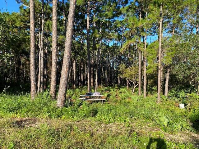 176 Shadow Bay Dr, EASTPOINT, FL 32328 (MLS #309216) :: Anchor Realty Florida