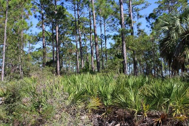 9444 Cr 30-A, PORT ST. JOE, FL 32456 (MLS #309254) :: Anchor Realty Florida