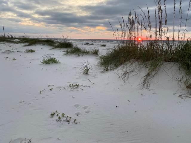 398 Gulf Shore Dr, CARRABELLE, FL 32322 (MLS #309255) :: Anchor Realty Florida