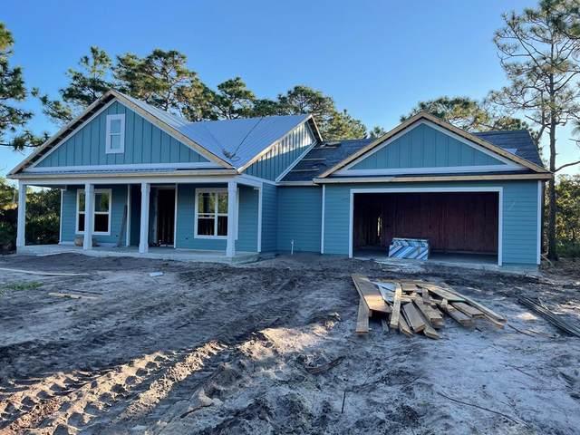314 Royal Tern Way, CARRABELLE, FL 32322 (MLS #309328) :: Anchor Realty Florida