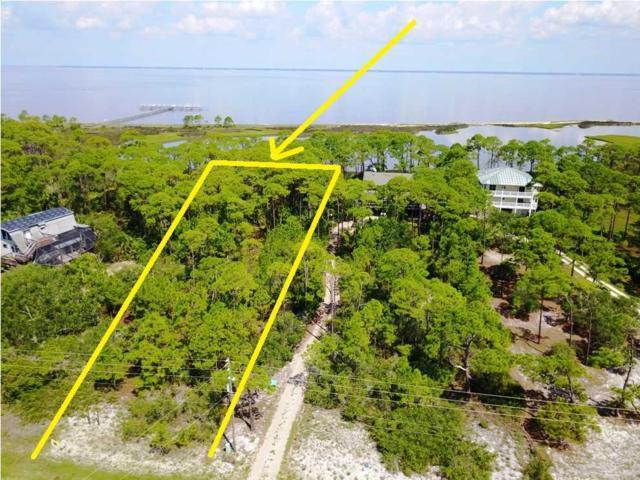 1663 East Gulf Beach Dr, ST. GEORGE ISLAND, FL 32328 (MLS #257926) :: Coast Properties