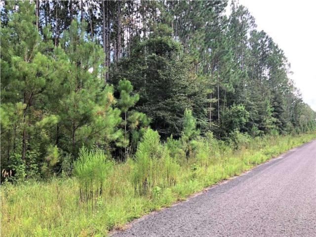 9 Jazzy Lane, WEWAHITCHKA, FL 32465 (MLS #259940) :: Coastal Realty Group