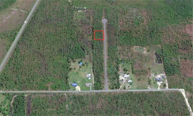 11 Jazzy Lane, WEWAHITCHKA, FL 32465 (MLS #259941) :: Anchor Realty Florida