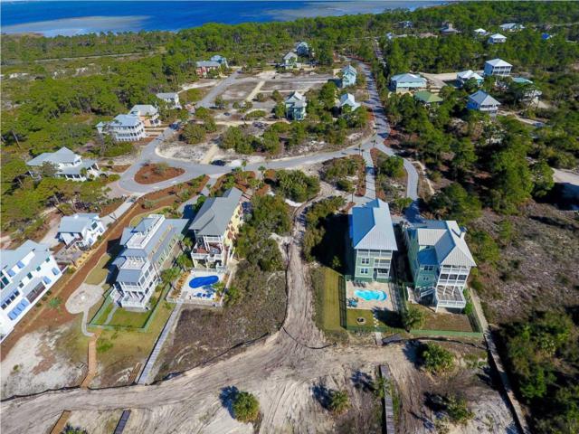 442 Jubilation Dr, CAPE SAN BLAS, FL 32456 (MLS #261249) :: Coast Properties