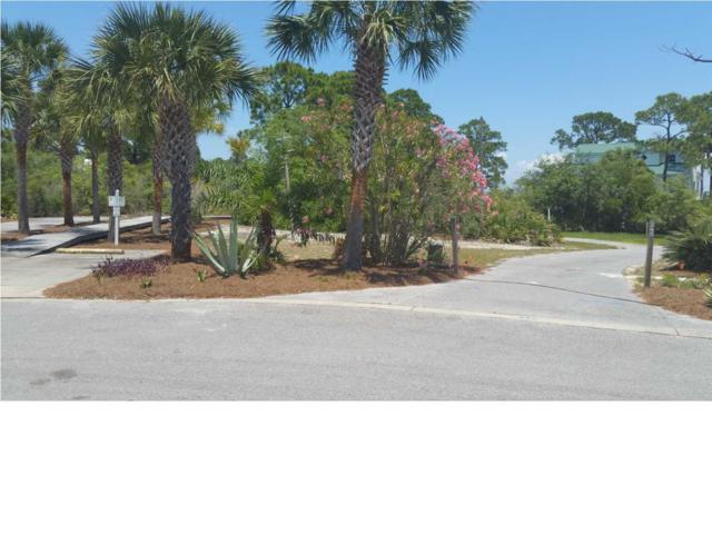 235 Bay Hibiscus Dr, CAPE SAN BLAS, FL 32456 (MLS #261882) :: The Naumann Group Real Estate, Coastal Office