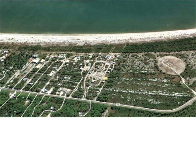 21 Cord Grass Way, CAPE SAN BLAS, FL 32456 (MLS #262131) :: Coast Properties