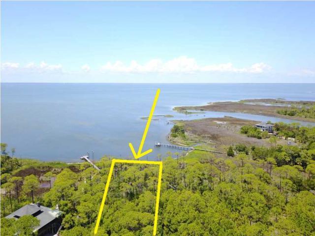 2015 Seminole Ln, ST. GEORGE ISLAND, FL 32328 (MLS #262164) :: Coast Properties