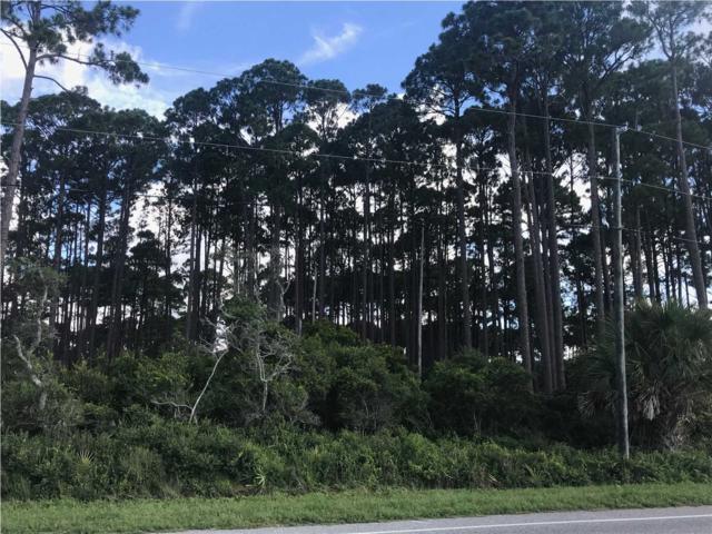 2307 Hwy 98, CARRABELLE, FL 32322 (MLS #262592) :: Coastal Realty Group