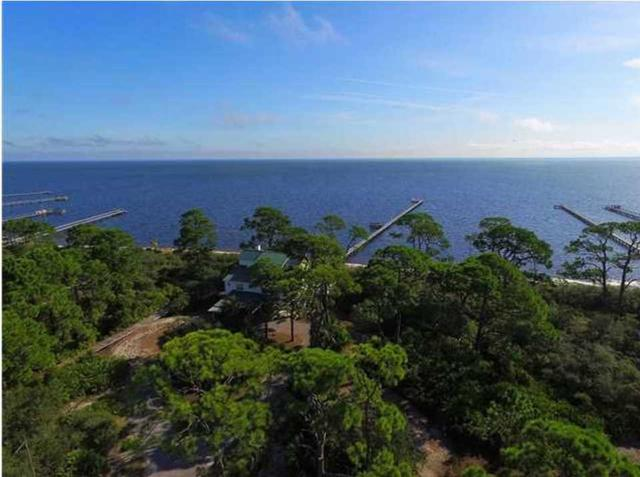 260 Bay Hibiscus Dr, CAPE SAN BLAS, FL 32456 (MLS #262889) :: The Naumann Group Real Estate, Coastal Office