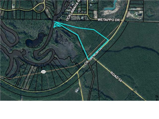 15 Cr 386 North, OVERSTREET, FL 32456 (MLS #262902) :: Coastal Realty Group