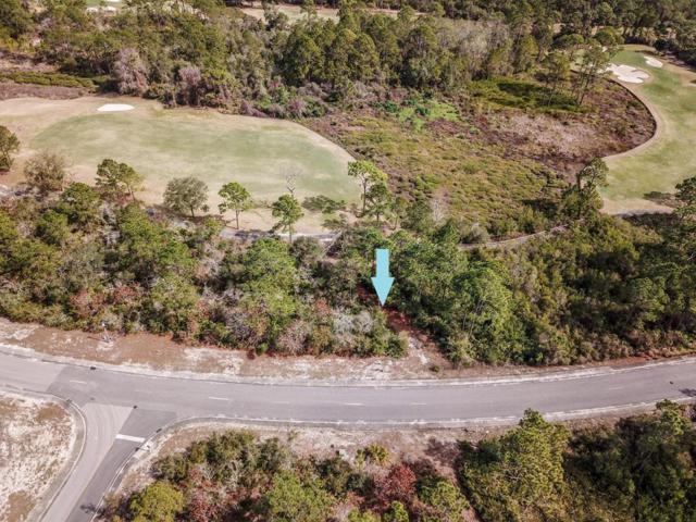 238 Royal Tern Way, CARRABELLE, FL 32323 (MLS #300879) :: CENTURY 21 Coast Properties