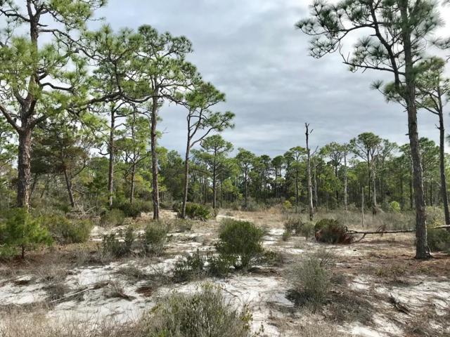 775 Bay, CARRABELLE, FL 32322 (MLS #300897) :: Coastal Realty Group