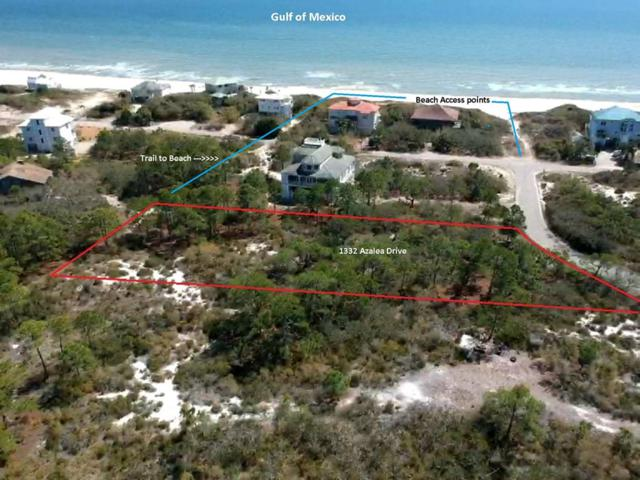 1332 Azalea Dr, ST. GEORGE ISLAND, FL 32328 (MLS #301039) :: Coastal Realty Group